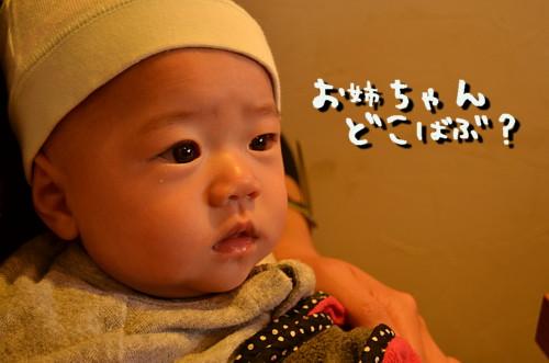 DSC_5265.jpg