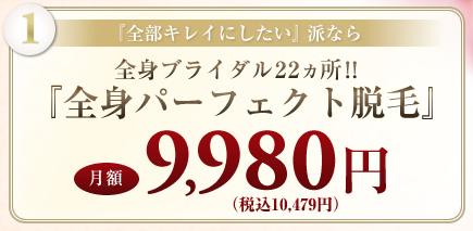 全身パーフェクト脱毛 9,980円