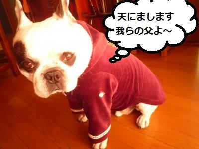 縺ォ縺薙i2012+813_convert_20121001111018