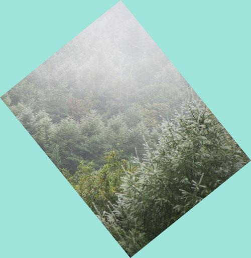 高原の水滴