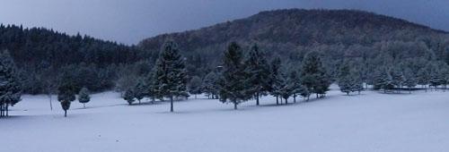 今朝のゴルフ場