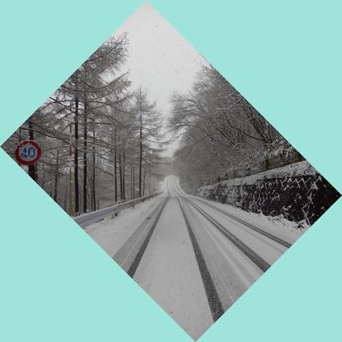 11月27日 今朝の飯綱東高原