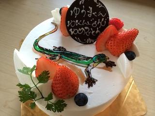 ゆうま ケーキ