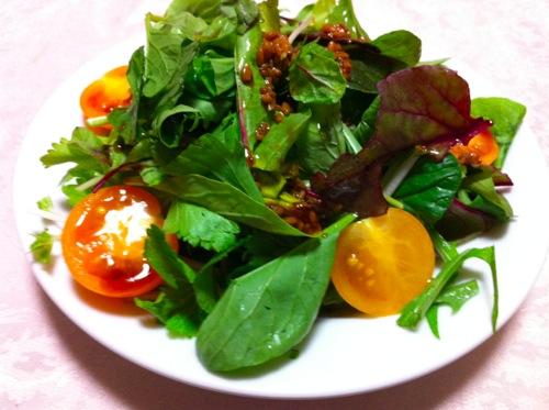 葉野菜とトマトのサラダ