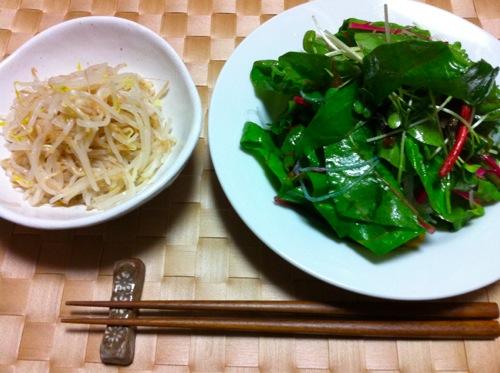 2モヤシ&サラダ