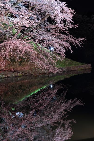 2011_01_27181.jpg