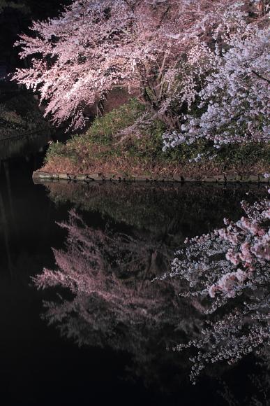 2011_01_27201.jpg