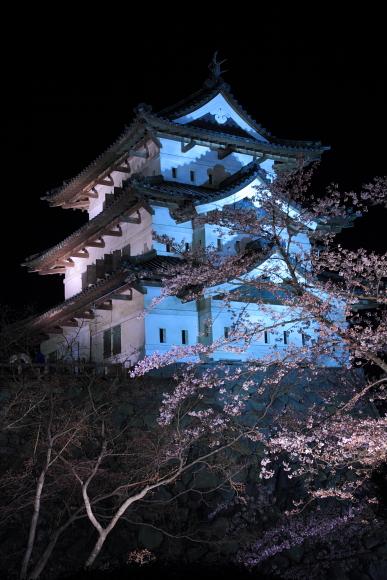 2011_01_27211.jpg