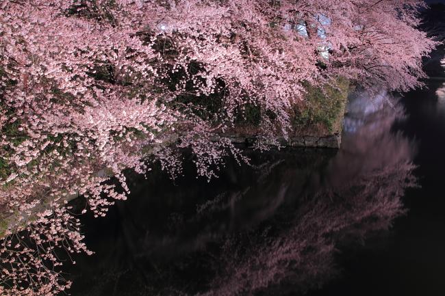 2011_01_27231.jpg
