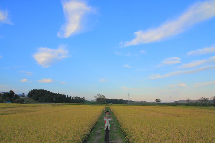 2011_09_10151.jpg