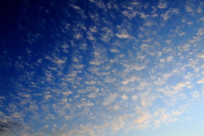 2011_09_10161.jpg