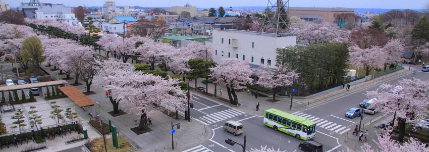 2011_11_03911.jpg
