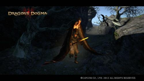 Dragons Dogma Screen Shot _3