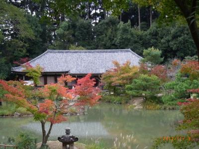中央宝池越しの本堂