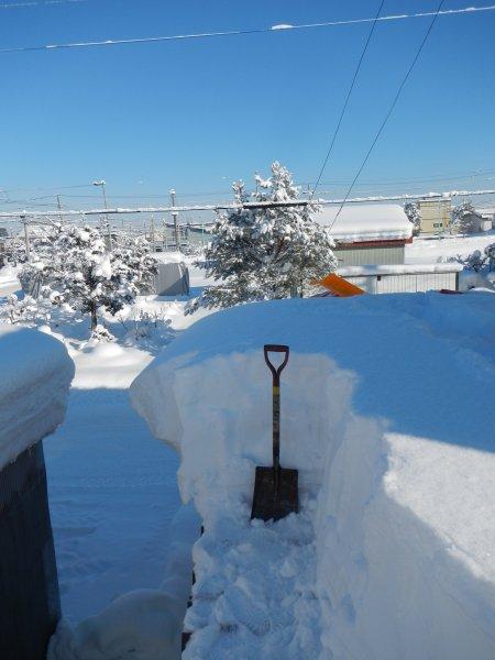 第1回雪下ろし12-13