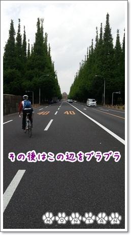 20130501_135626.jpg