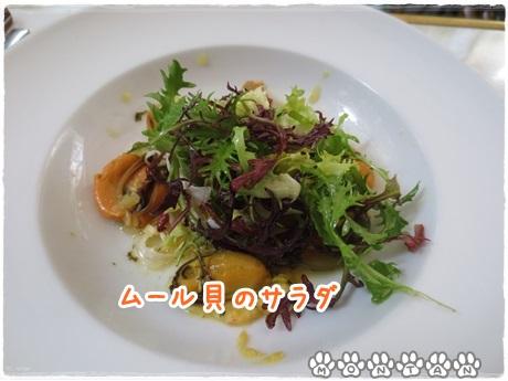 IMG_6705.jpg