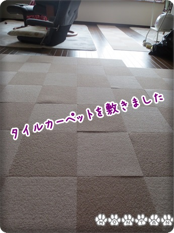 IMG_7078.jpg