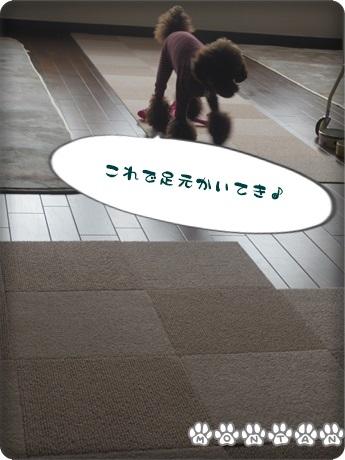 IMG_7079.jpg