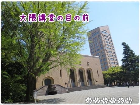 IMG_7674.jpg