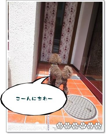 IMG_9195.jpg