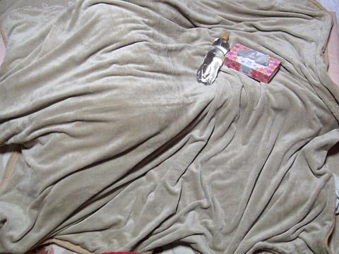 maxshareの「マイクロファイバー毛布 2枚合わせ ダブルサイズ」 広げてみた