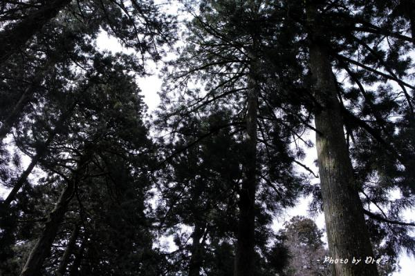 2012_0319_0076.jpg