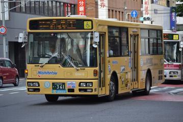DSC_0768-1.jpg