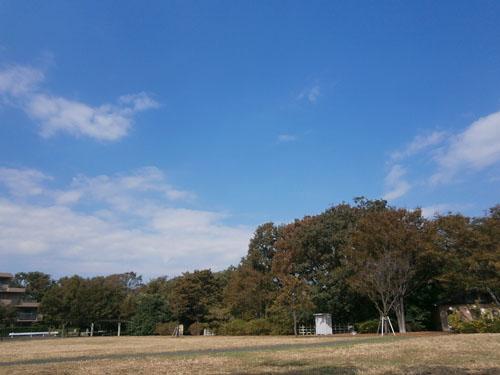 PA201180.jpg