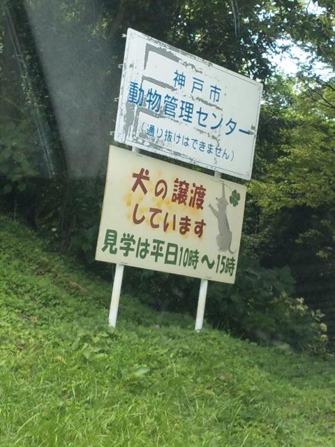 神戸市 動物管理センター