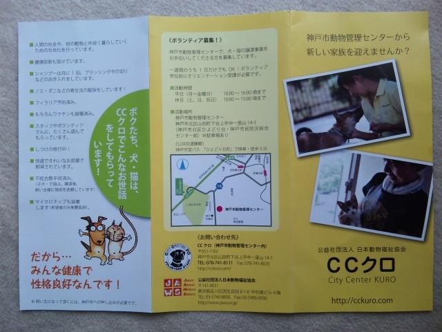 CCクロ1
