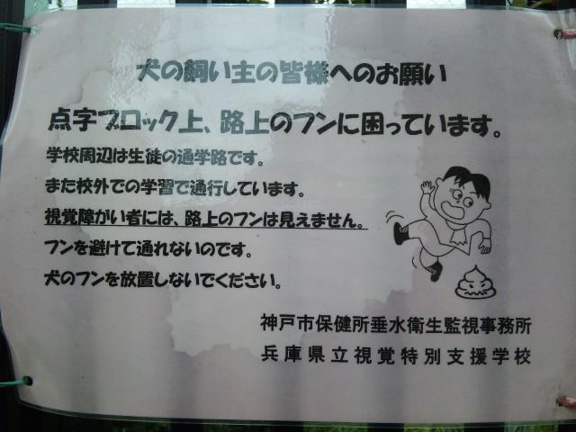 視覚支援学校 ポスター