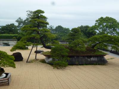 日本一盆栽 6・16
