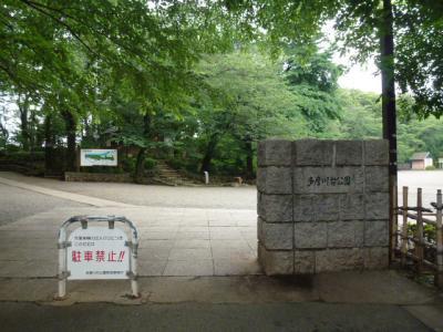 多摩川台公園入口 6・24