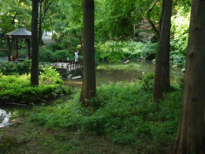 林試の森公園② 6・30