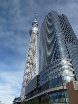 東京スカイツリー③ 7・16