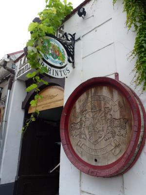 センテンドレ⑤ワイン博物館 7・25