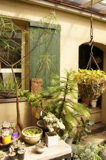 中庭の小屋
