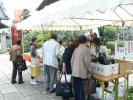 野菜や花苗を販売