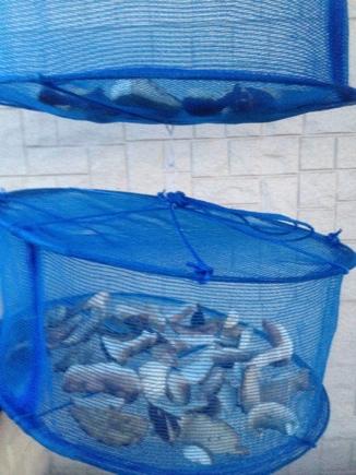 fc2blog_201207211430331a7.jpg