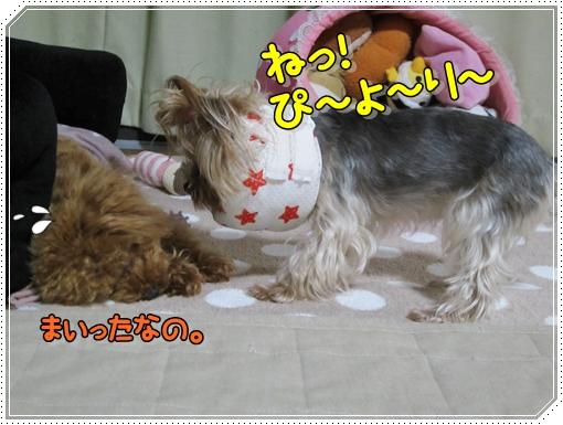 015_20120814151512.jpg