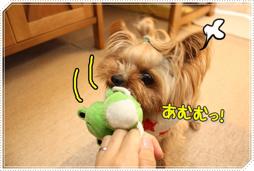 IMG_0021_20120803081752.jpg
