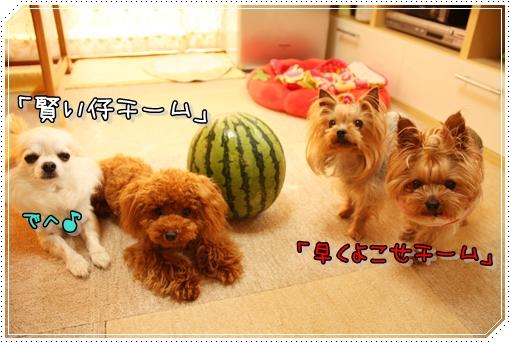 IMG_0212_20120711174630.jpg