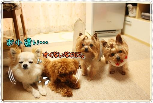 IMG_0355_20120706205845.jpg