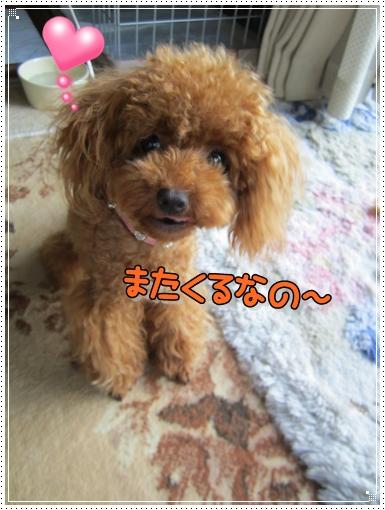 IMG_4301.jpg
