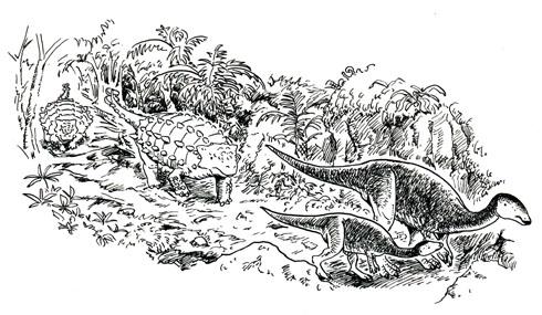 4-004 恐竜道