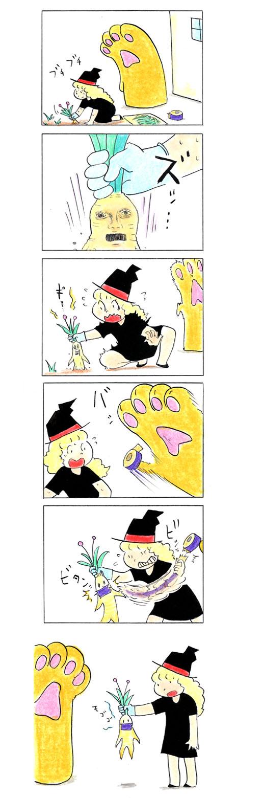 猫の手301