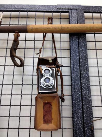 20121113-14佐田岬 031