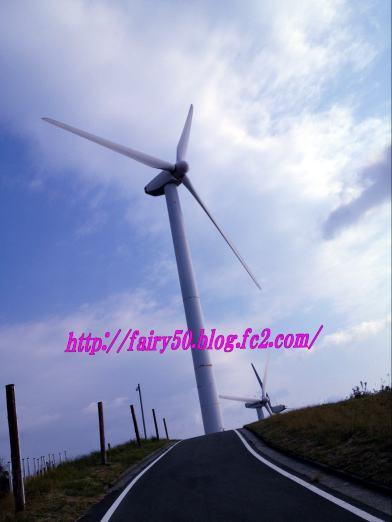 20121113-14佐田岬 063