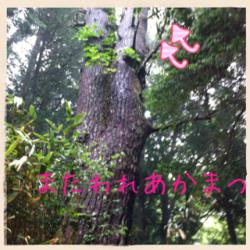 縺セ縺溷牡繧後≠縺九∪縺、__convert_20120611103227
